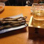 糸魚川ひとり旅